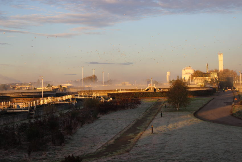 SUEZ – Activité Eau – Station d'épuration de Tougas de l'agglomération nantaise