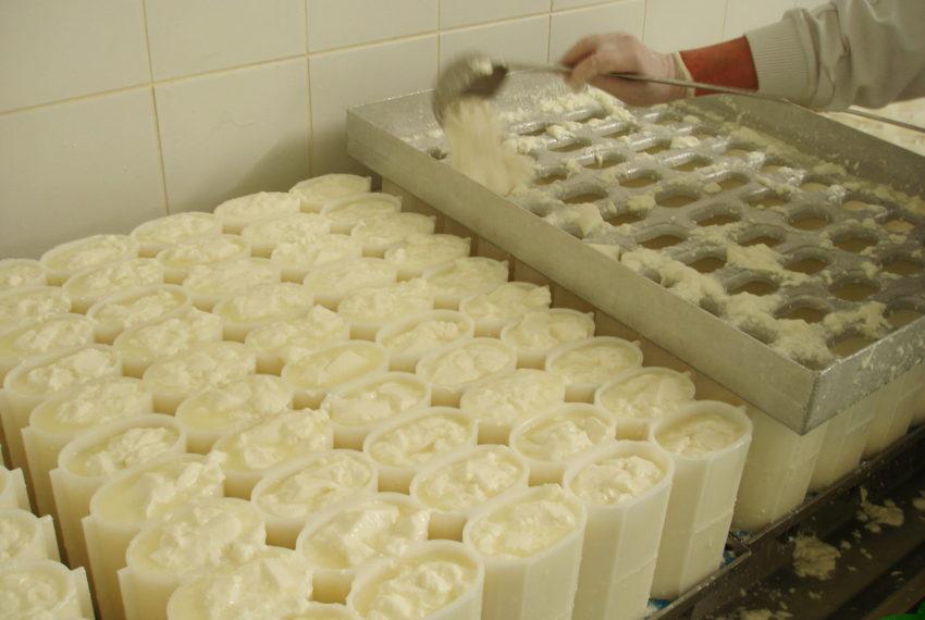 Préparation Fromage Beillevaire (24)