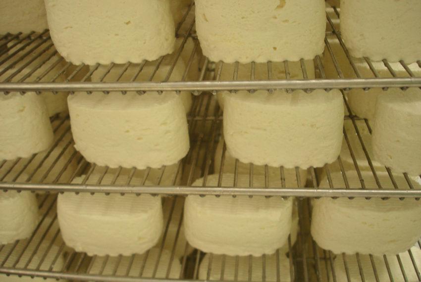 fromage -Beillevaire (52)