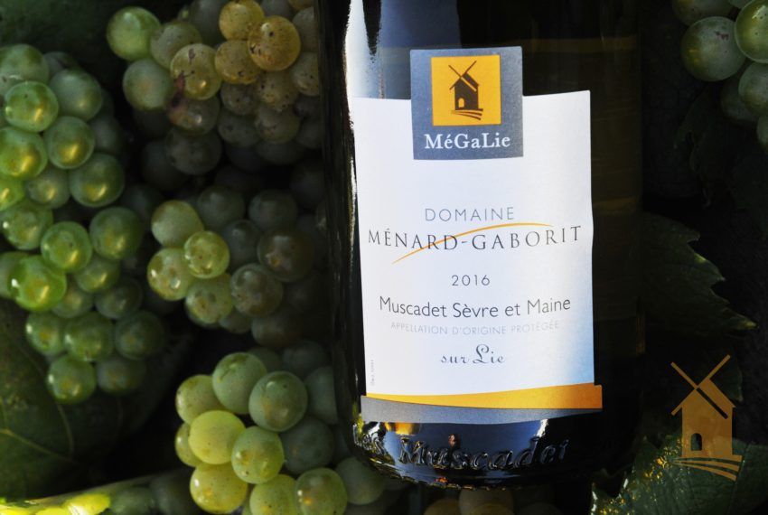 Ménard-Gaborit Vendanges 2017 (75)