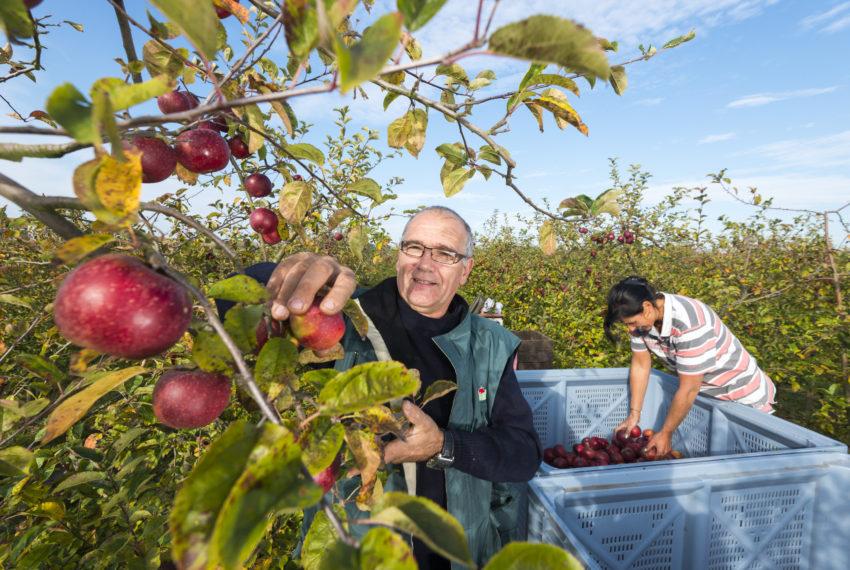 Les Côteaux Nantais, arboriculteur en biodynamie et créateur de produits à base de fruits