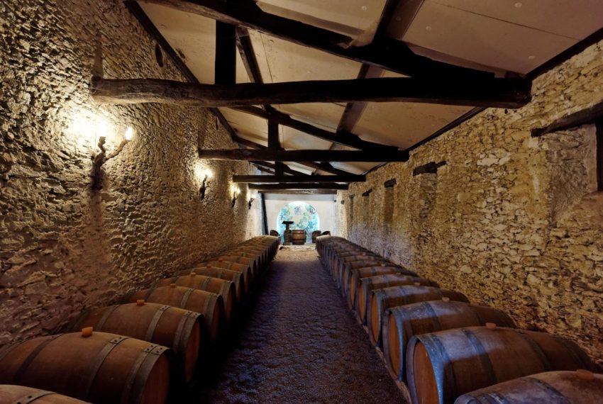 Château Cassemichère 44 caves à Bacchus (2)