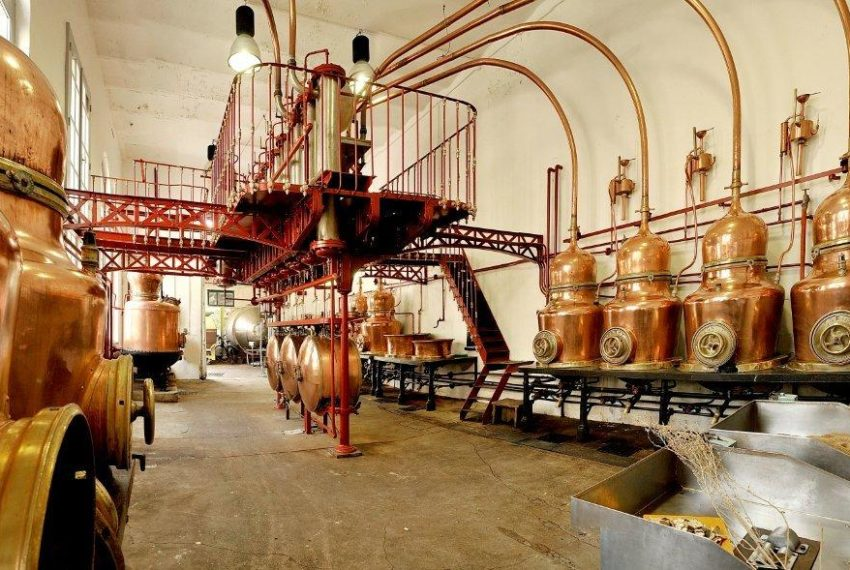 Distillerie Combier (Visites suspendues)